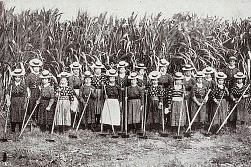 Imigracao-Japonesa-Brasil